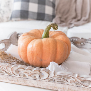 Picture of a pumpkin in a tan decorative tray. This picture is being used for a blog about fall decorating tips.